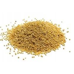 Grains Hulled Millet (1x50LB )